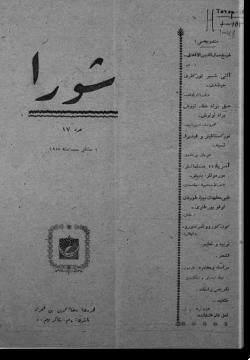 """""""Шура"""", 1917 г. №17"""